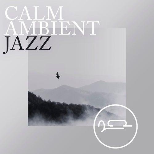 Calm Ambient Jazz de Various Artists