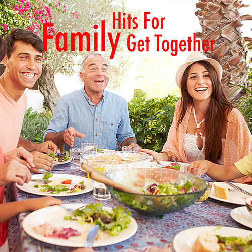 Hits For Family Get Together by Various Artists