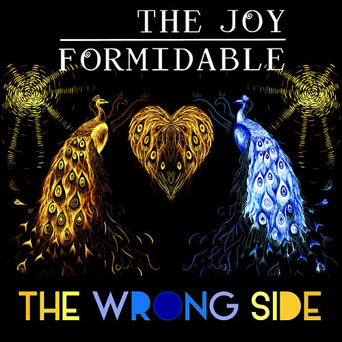 The Wrong Side by The Joy Formidable