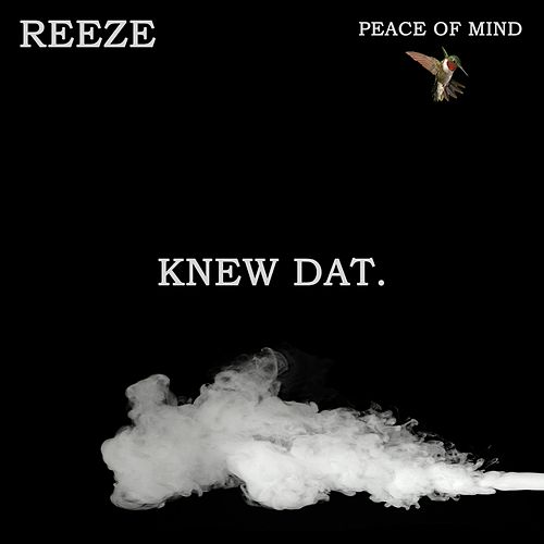 Knew Dat (feat. Southern Child) by Reeze