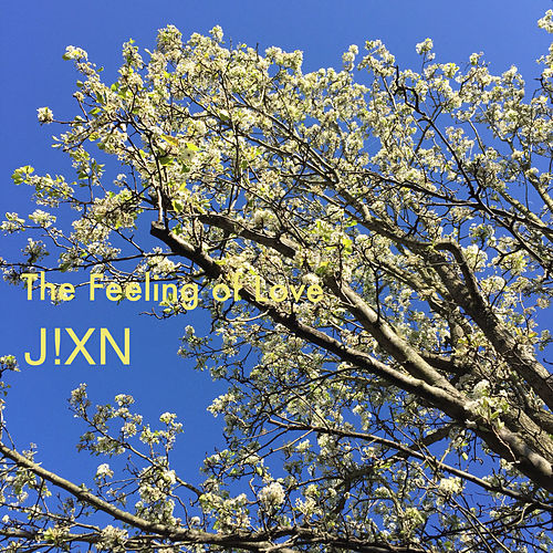 The Feeling of Love (Instrumental) de JxN