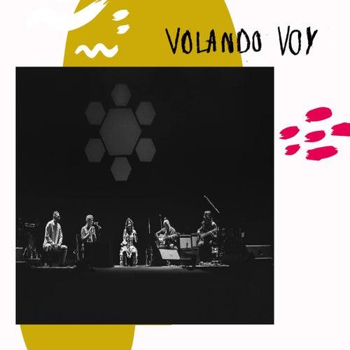 Volando Voy (En Directo) by Chambao