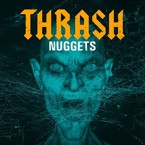 Thrash Nuggets von Various Artists