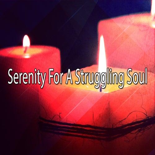 Serenity For A Struggling Soul de Meditación Música Ambiente