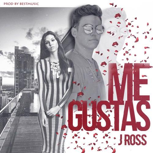Me Gustas by J. Ross