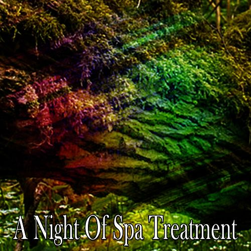 A Night Of Spa Treatment von Best Relaxing SPA Music