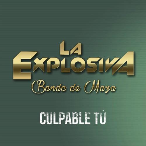 Culpable Tú by La Explosiva Banda De Maza