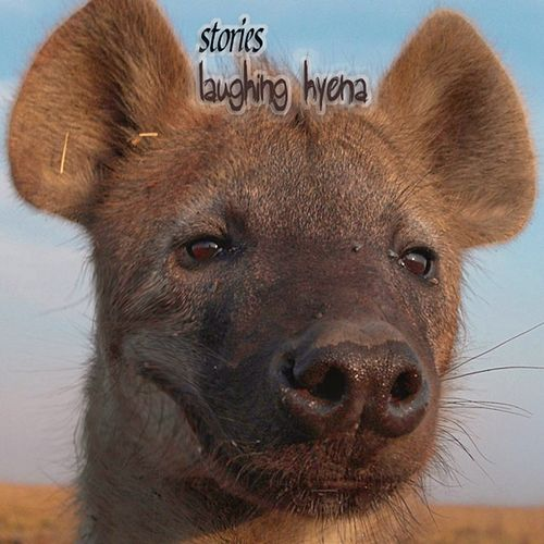 Laughing Hyena (Limited edition) by The Stories