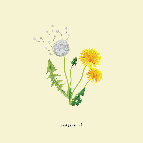 Imagine If by Gnash