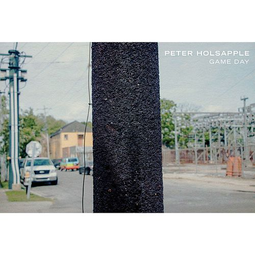 Commonplace by Peter Holsapple