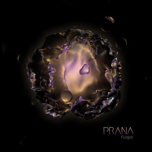 Fulgor by Prana