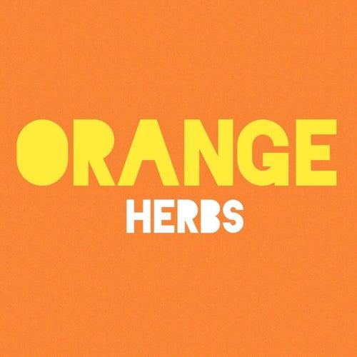 Orange by Herbs