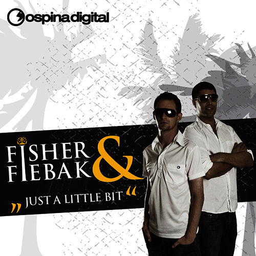 Just A Little Bit by Fisher