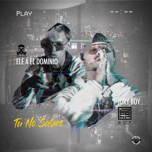 Tu No Sabes (feat. El Dominio) by Jory Boy