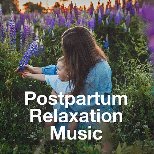 Postpartum Relaxation Music for Mother and Baby de Various Artists