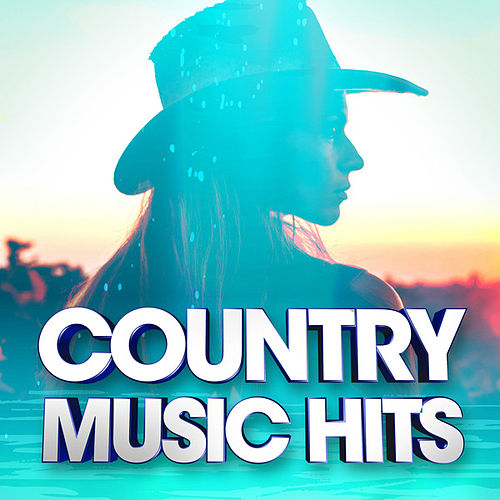 Country Music Hits von Various Artists