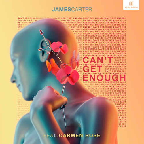 Can't Get Enough von James Carter