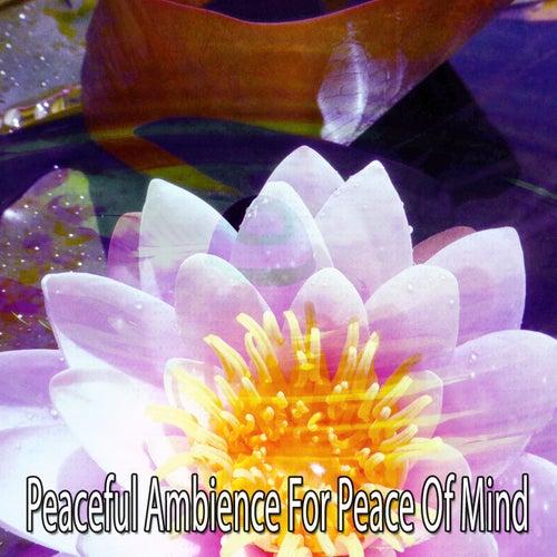 Peaceful Ambience For Peace Of Mind de Meditación Música Ambiente