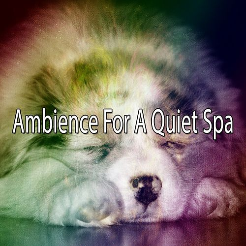 Ambience For A Quiet Spa von Best Relaxing SPA Music