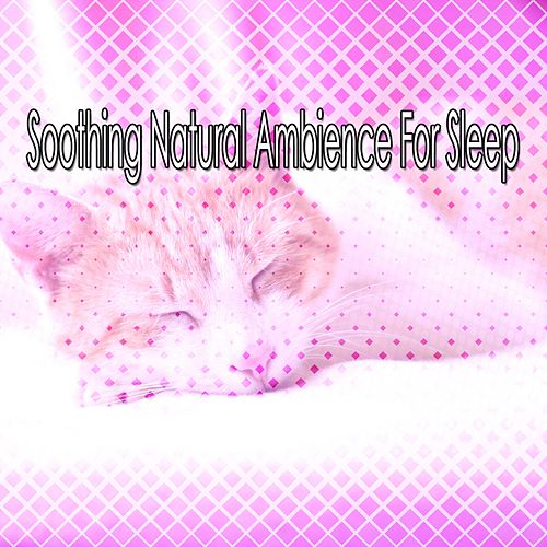 Soothing Natural Ambience For Sleep von Rockabye Lullaby