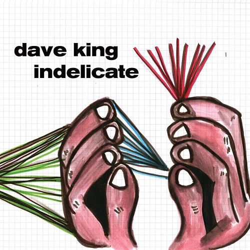 Indelicate by Dave King