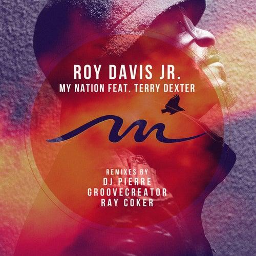 My Nation by Roy Davis, Jr.