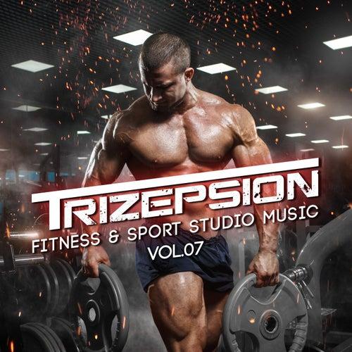 Trizepsion, Vol. 7 de Various Artists
