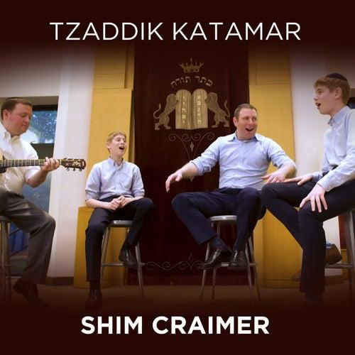 Tzaddik Katamar van Shim Craimer