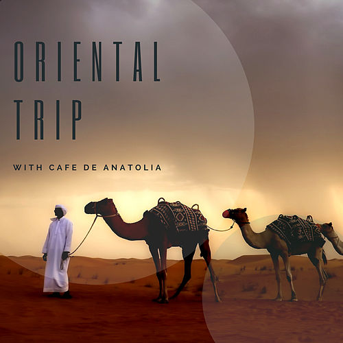 Oriental Trip von Various Artists