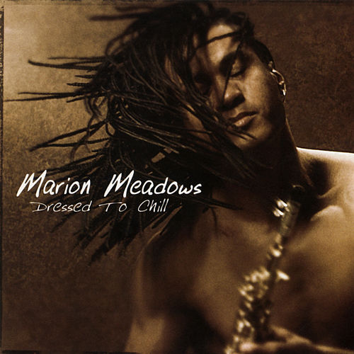 Dressed To Chill by Marion Meadows