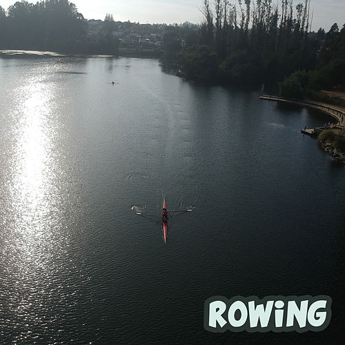 Rowing von Various Artists