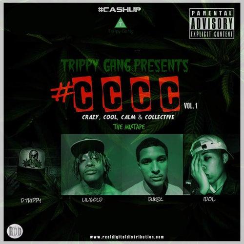 #CCCC (Vol. 1) von Trippy Gang