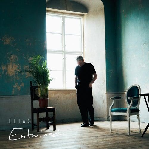 Entwined von Elias