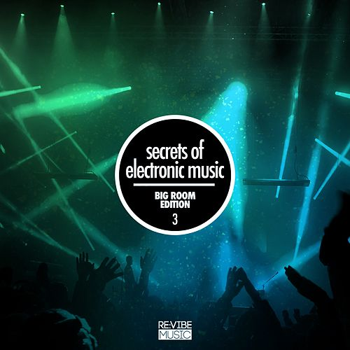 Secrets of Electronic Music - Big Room Edition, Vol. 3 von Various Artists