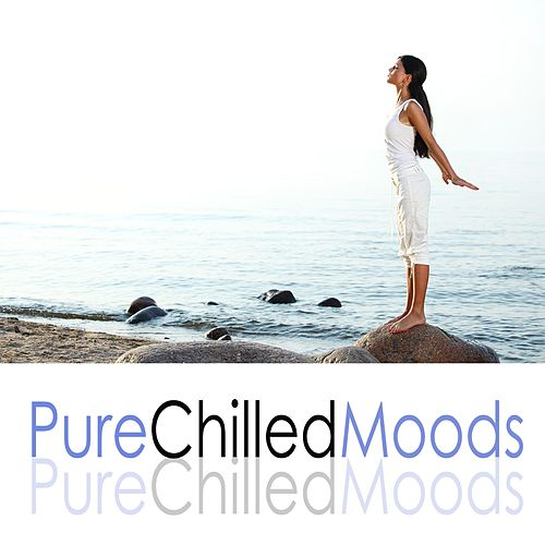 Pure Chilled Moods von Various Artists