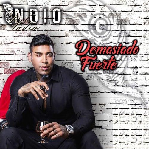 Demasiado Fuerte by Rik Indio