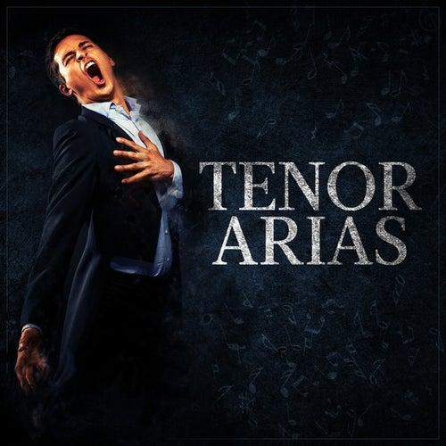 Tenor Arias von Various Artists