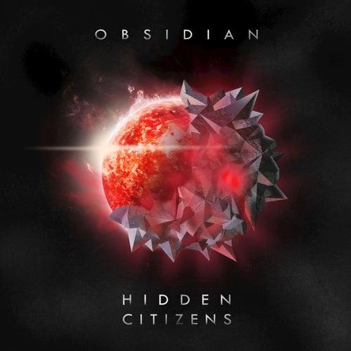 Obsidian by Hidden Citizens
