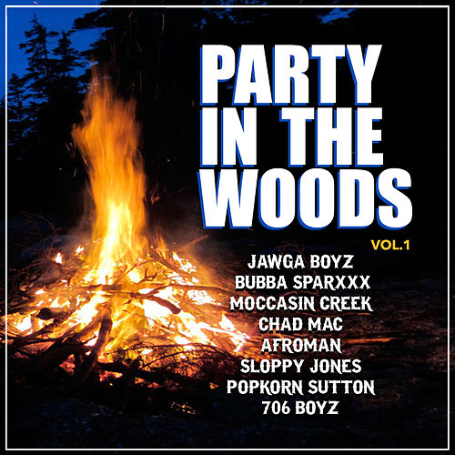 Party in the Woods, Vol. 1 de Various Artists