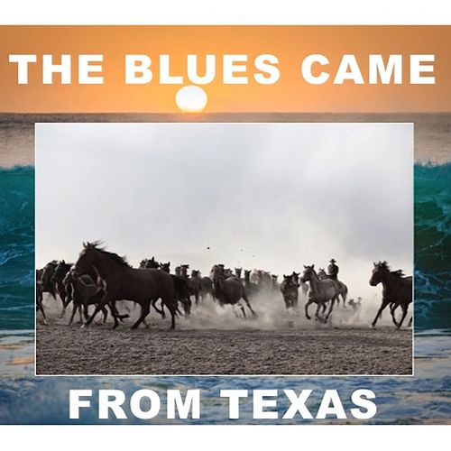 The Blues Came From Texas de Various Artists