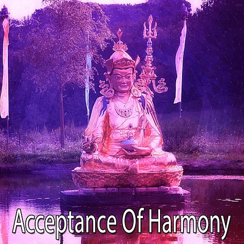 Acceptance Of Harmony von Entspannungsmusik