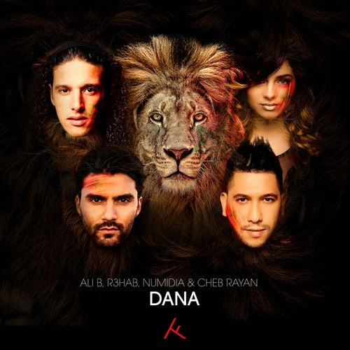 Dana (feat. Numidia) von Ali B