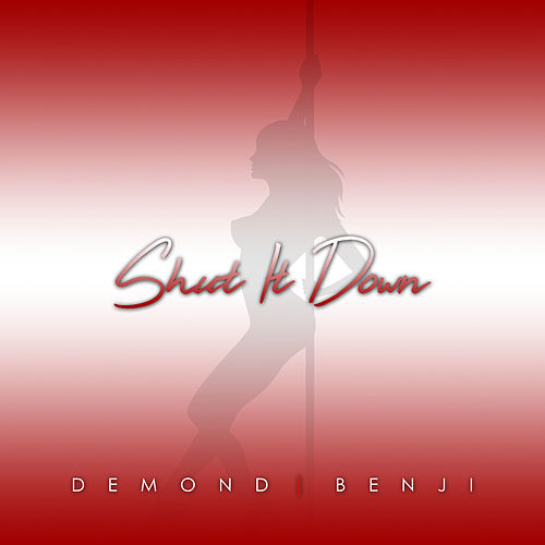 Shut It Down by Demond