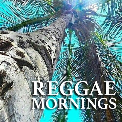 Reggae Mornings by Various Artists