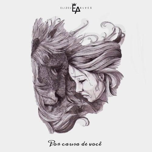 Por Causa de Você by Elizeu Alves