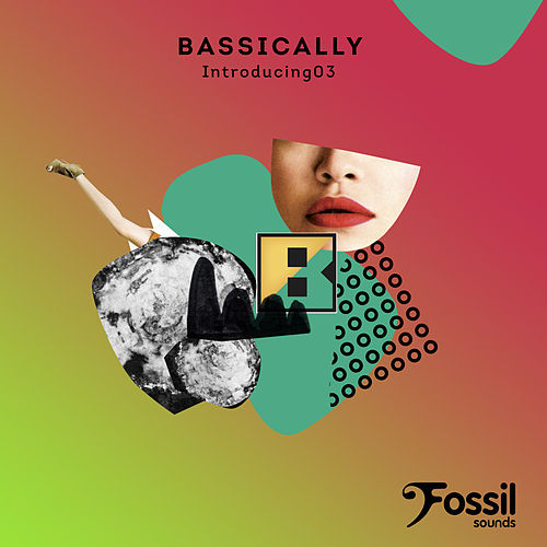 Introducing 03 by Bassically
