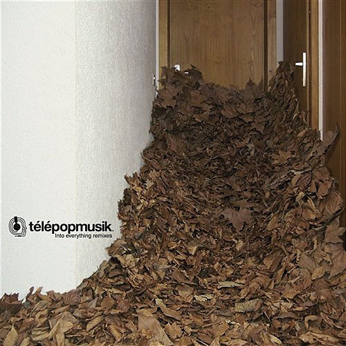 Into Everything by Telepopmusik