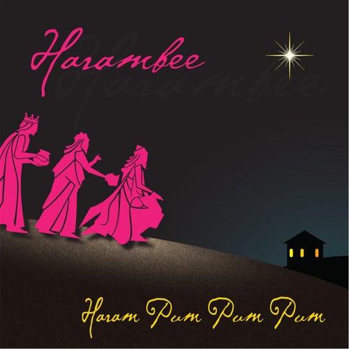 Haram Pum Pum Pum de HARAMBEE