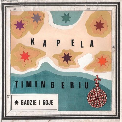 Gadzie i Goje by Kapela Timingeriu