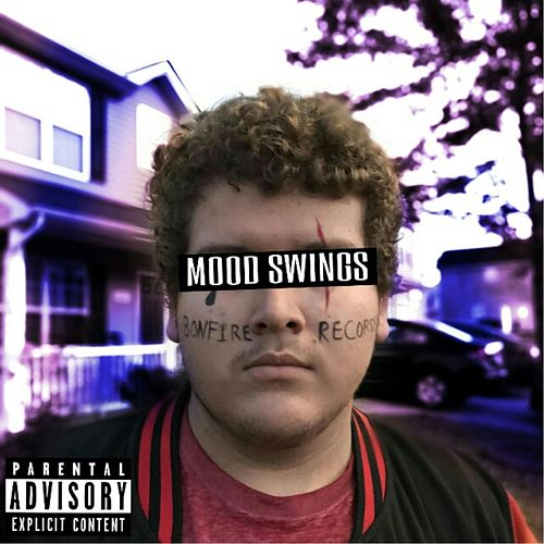 Mood Swings van Rigo
